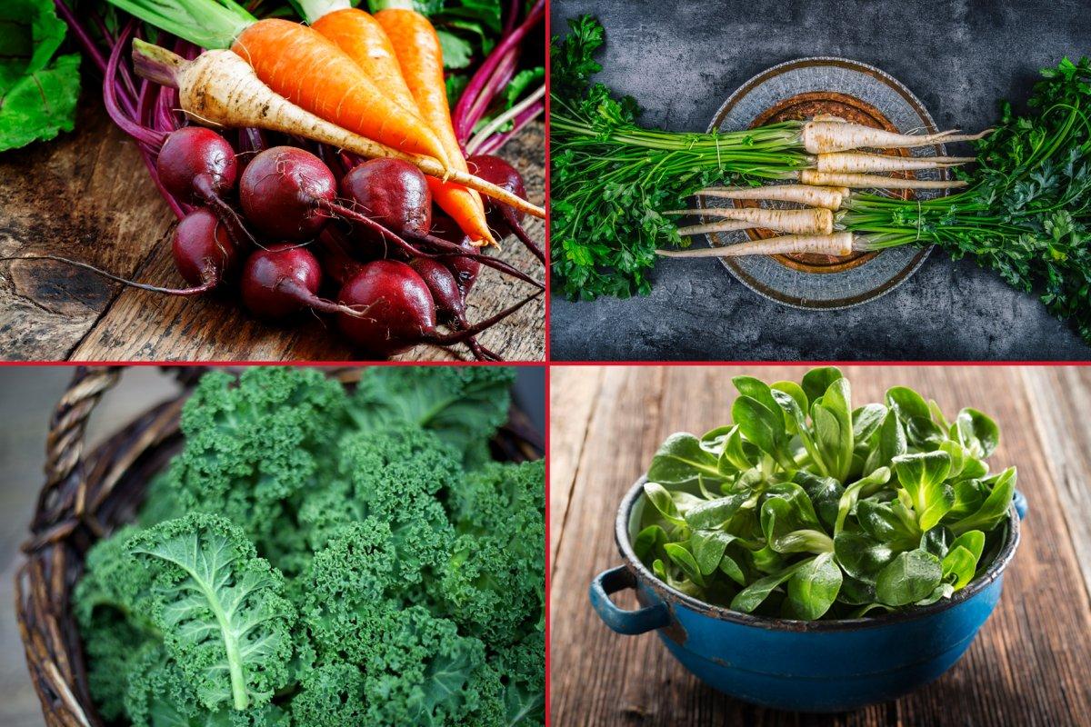 Saisonkalender Obst & Gemüse Dezember in Deutschland