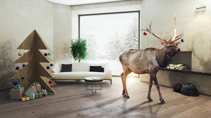 Lustige Tannenbaum Sprüche.Weihnachtsbaum Aus Holz Bildergalerie Bildderfrau De