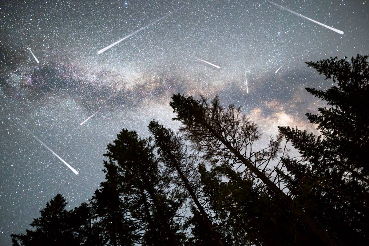 sternschnuppen oktober 2020