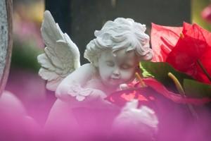 Engel Sprüche Die Schönsten Herzerwärmenden Worte