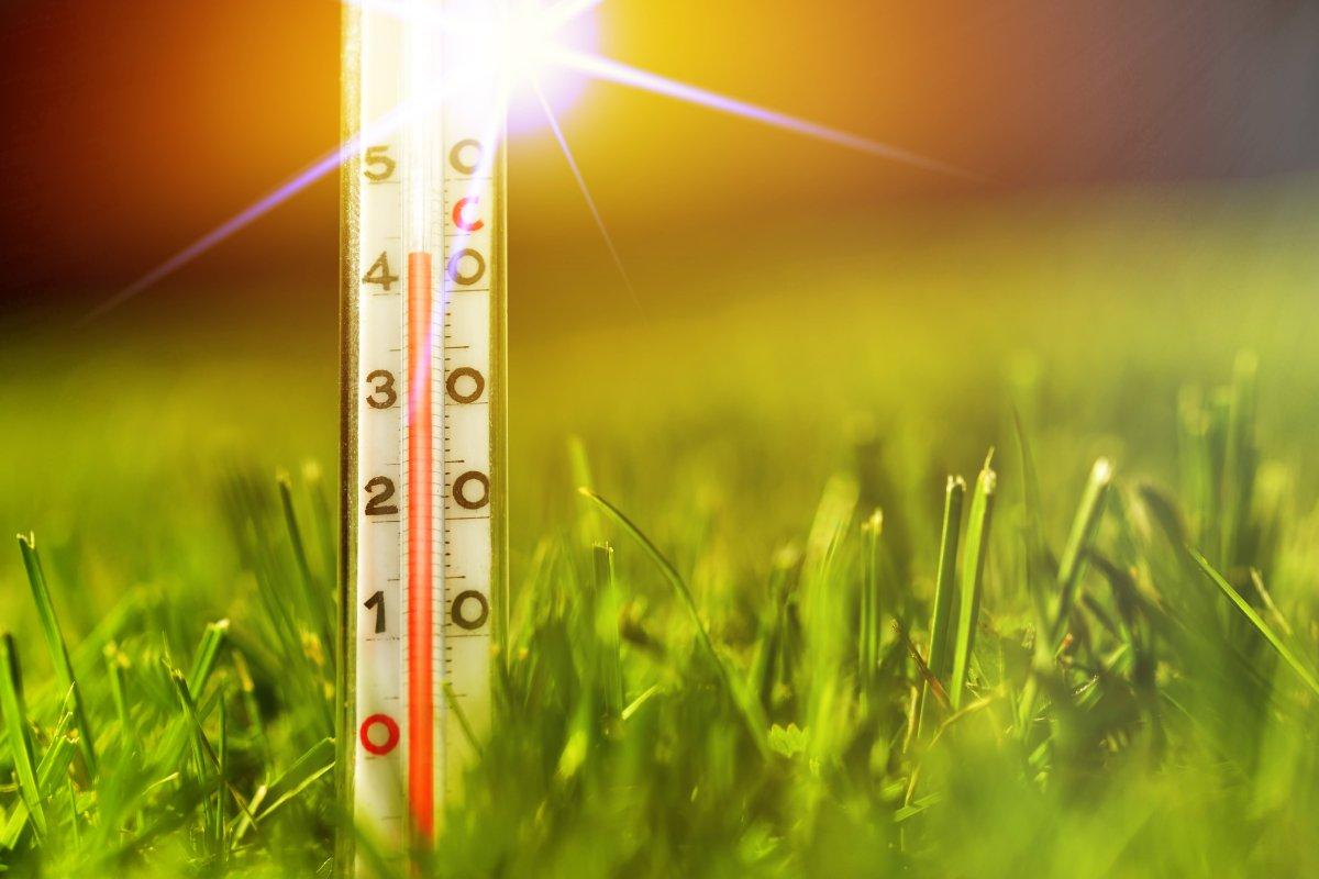 Immer mehr Verbote wegen der Hitze! Was alles nicht erlaubt ist