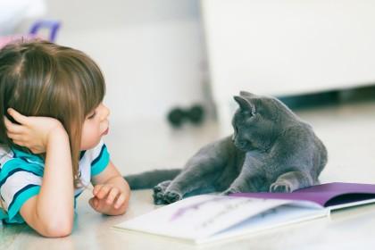 Kinder Lesen Katzen Vor Corona Stoppt Das Tierheim Projekt Nicht Bildderfrau De