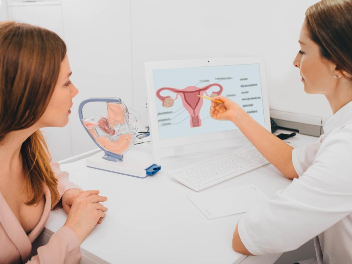Kosten frauen sterilisation bei experience-ga.ctb.com: Sterilisation