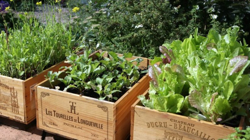 Ideen Fur Den Garten Absolut Genial 411 Besten Wohnen Bilder Auf