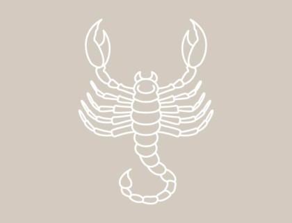 Worauf steht skorpion mann