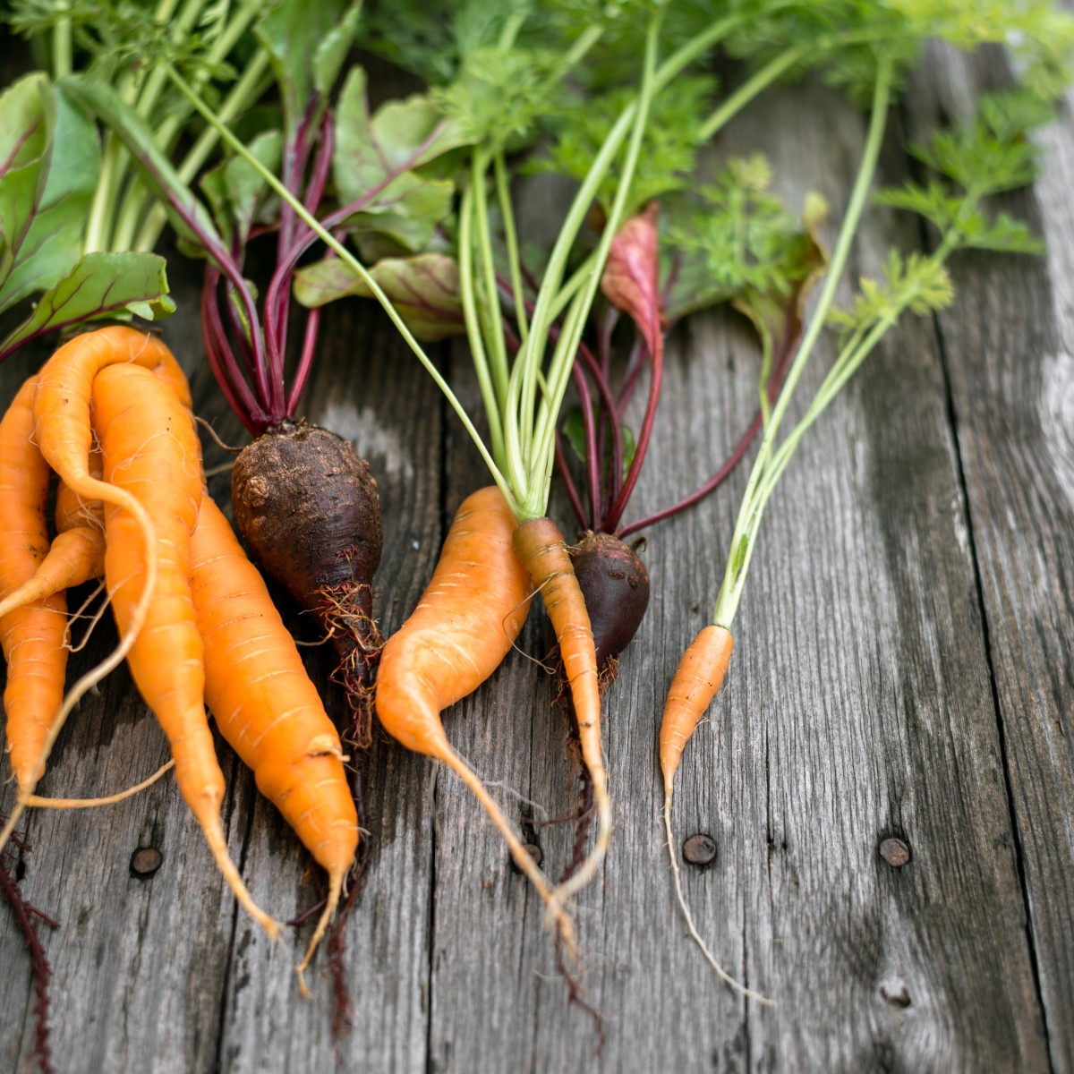 19+ Veggie Trends 8 Von krummem Gemüse und mehr   bildderfrau.de Image