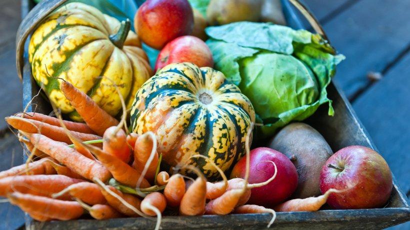 Saisonkalender obst gem se november in deutschland bild der frau - Kochen nach saison ...