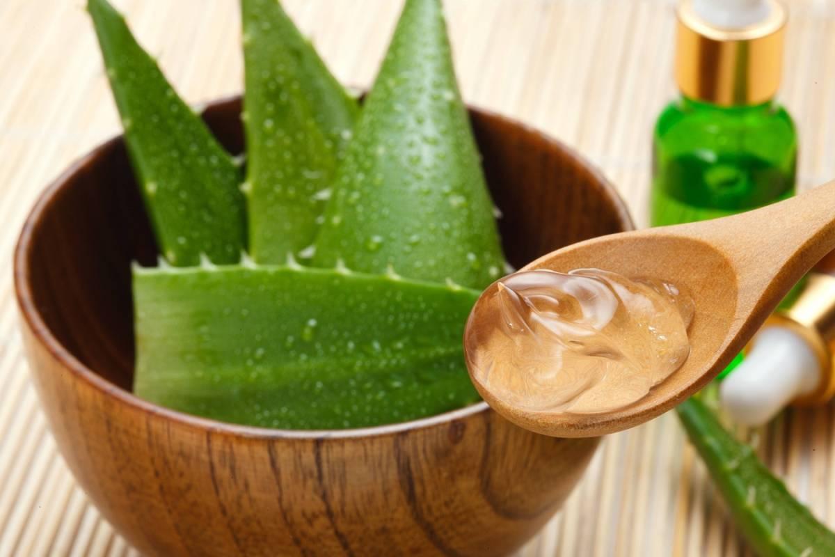 So Gesund Ist Aloe Vera Für Die Haare Sanfte Pflege Mit Gel