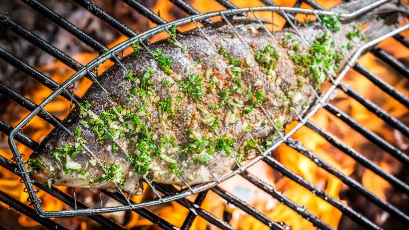 Genuss-pur-Gegrillte-Forelle-mit-franz-sischem-Gurkensalat