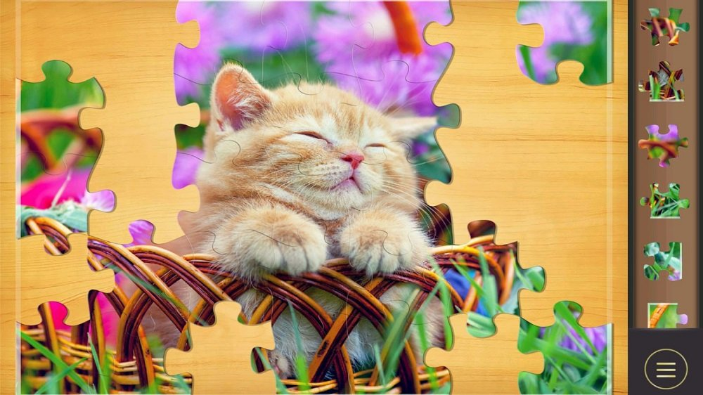 Natürlich könnenauch Katzenbilder gepuzzelt werden - oder eben eigene Fotos!